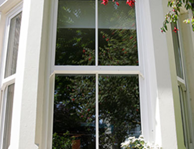 View our Windows range